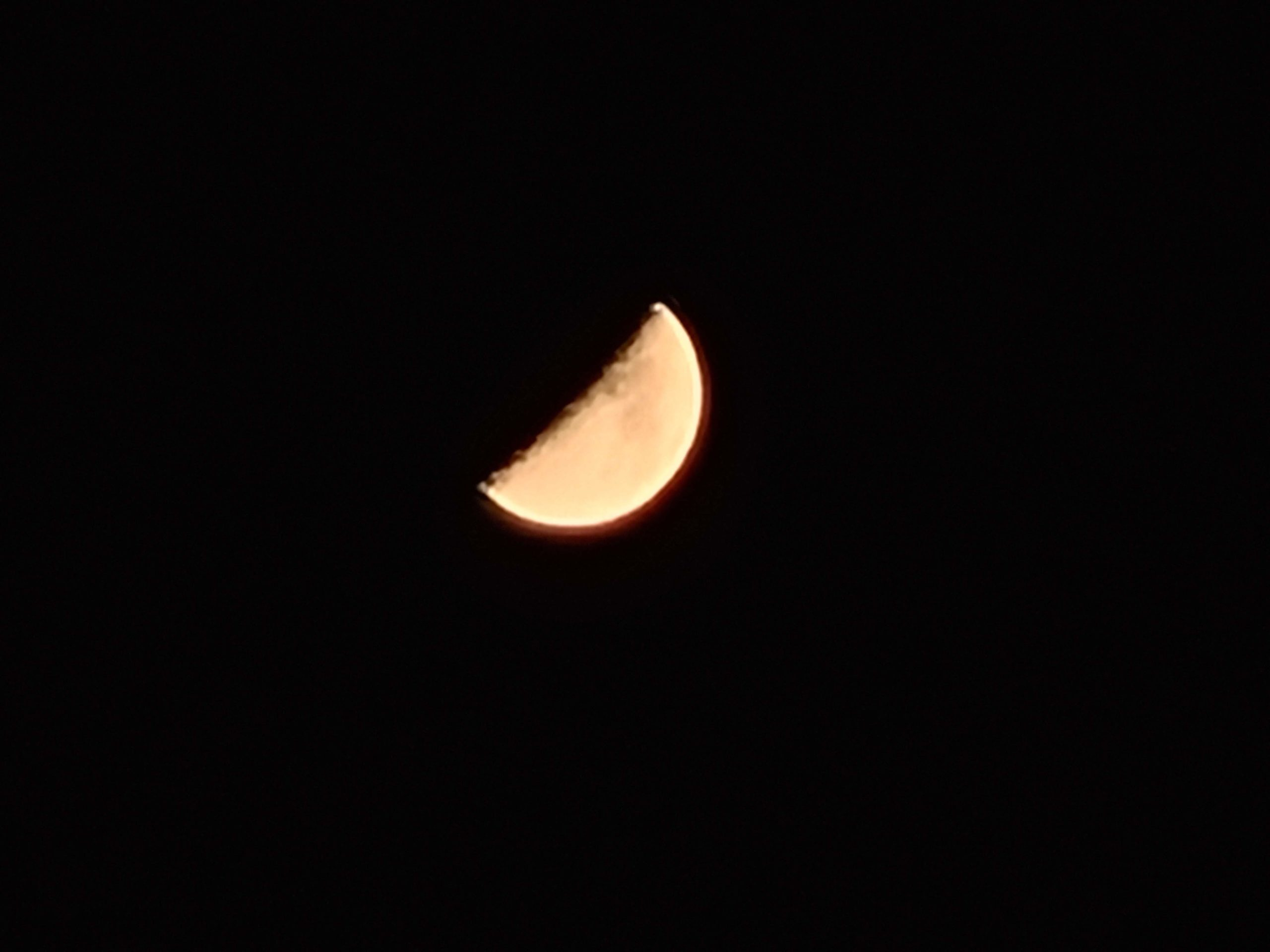 Galaxy S20+ 作例 月
